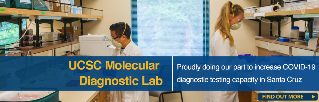 molecular diagnostic lab banner